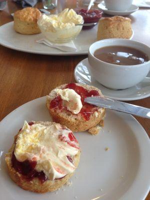 Explore England Cream Tea - Scones with jam & Clotted Cream